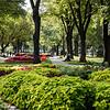 Kremlin Gardens