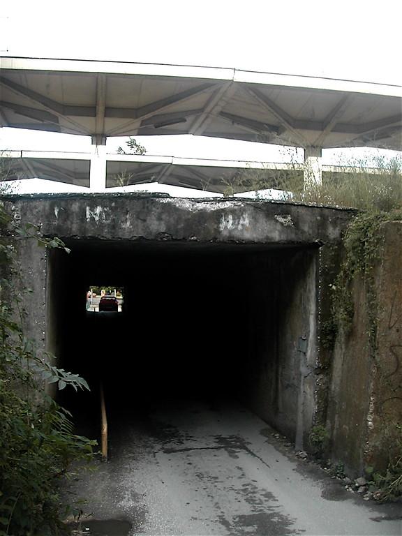 DSCN4217.JPG