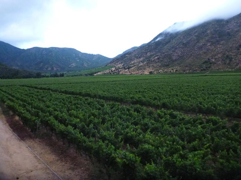 Neyen winery in the Colchagua valley.