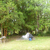 EcoCamp-site, outside of Puyuhuapi
