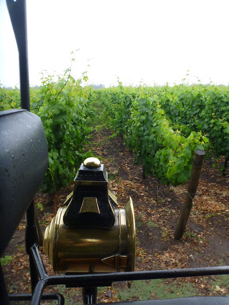Viu Manent winery in the Colchagua valley.