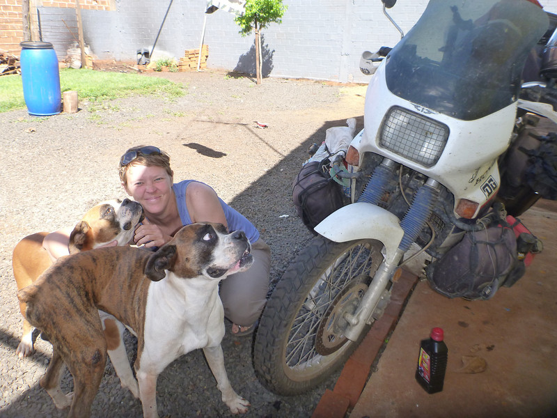 Jill with the boxers, Iguassu Motorcycle Traveler's Hostel, Foz de Iguacu, Brasil