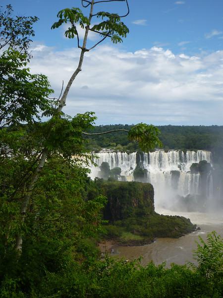View of the Argentine side around the tree  (Foz do Iguassu)