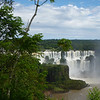 View of the Argentine side around the tree  (Foz do Iguassu)