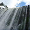 looking up the falls  (Cataratas de Iguazú)