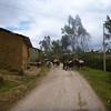 Horses and people working on the way to the Sarcofagos de Karajia, Peru