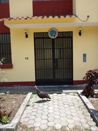 Motojeros - Peru