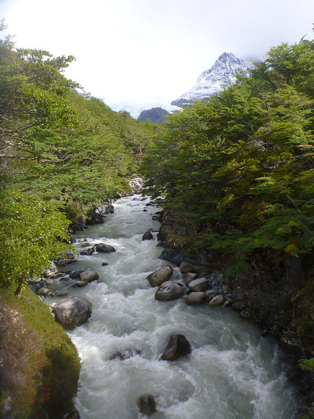 Glacial stream just outside of Campamento los Perros, Torres del Paine