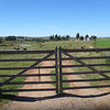 gate into Alejandro's place (Rocha)
