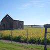 farm view near Parque Brisas del Plata, Uruguay