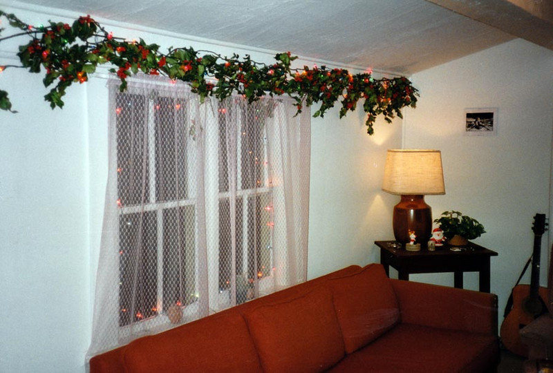 HOLLY GARLAND<br /> This strand of fake holly garland really added a lot to holiday feel.