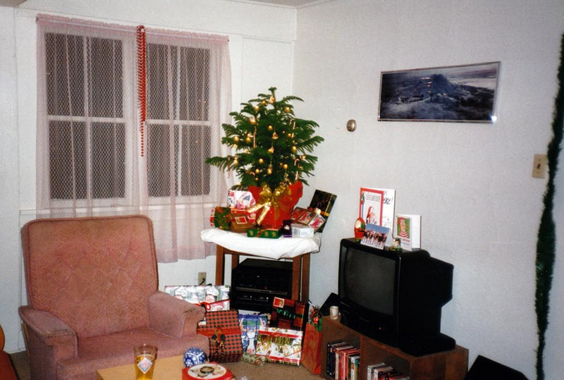 MERRY CHRISTMAS<br /> And here we have Doug's place set up for the holidays. Notice my roommate's TV has appeared now. Cool! They even had cable hookup, so I could watch Discovery Channel shows and tons of other stuff. I've already started my VHS collection, as you can see. And there's my Pike Place pint glass, too. I hated it when that thing broke.