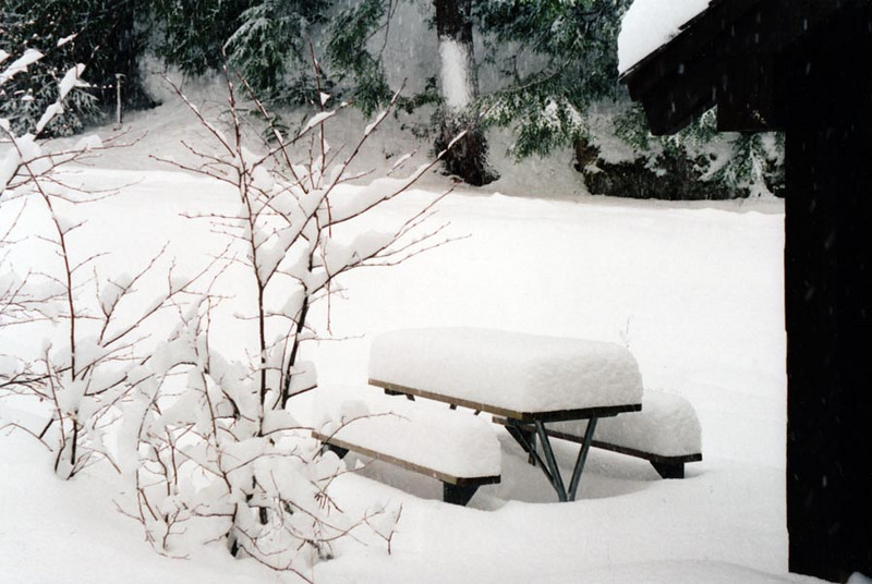 CHECK IT OUT<br /> I believe this was almost a foot of snow that fell. Check out that picnic bench.