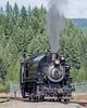Mt rainier railroad steam engine