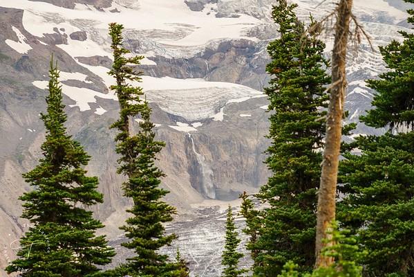 Mt Rainier Falls