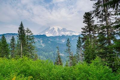 Mt Rainier Vista