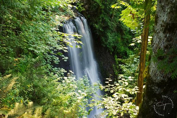 Mt. Rainier - Fennel Creek Falls