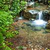 Matt Davis Trail Mt Tamalpias Mini Creek Falls (Portrait Orientation)