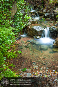 Matt Davis Trail Mt Tamalpias Mini Creek Falls (Portrait Orientation)