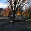 Fall colors in December
