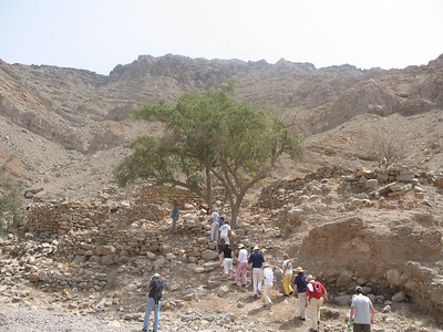 Heading up through the wadi to the only shady tree.