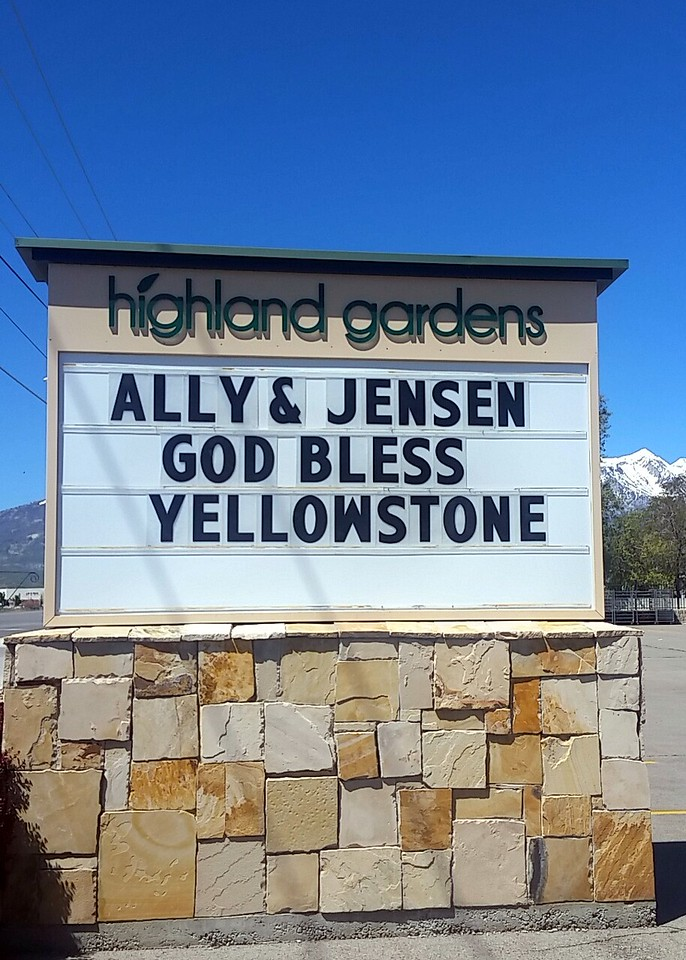 New Couple met at Yellowstone