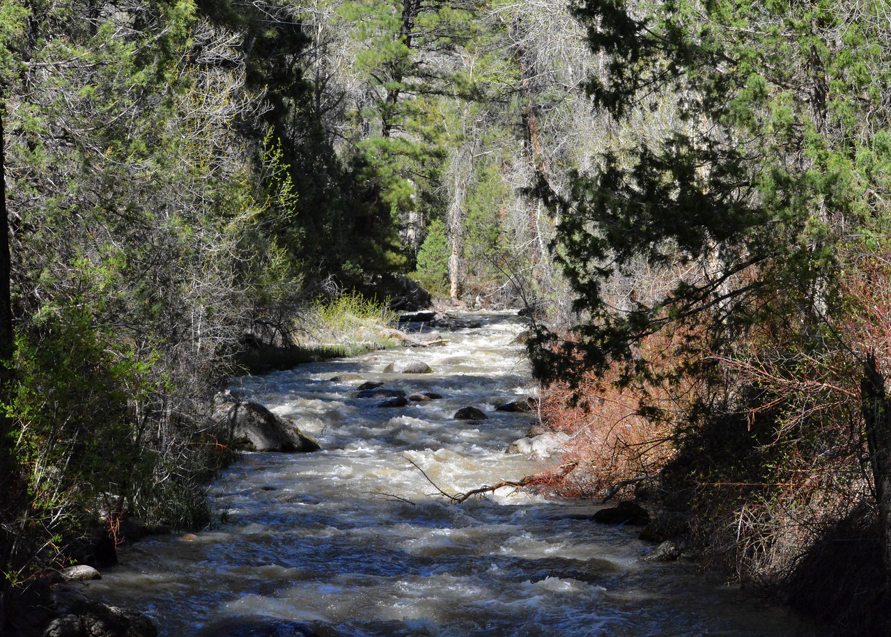 Otter Creek in Fishlake National Forest