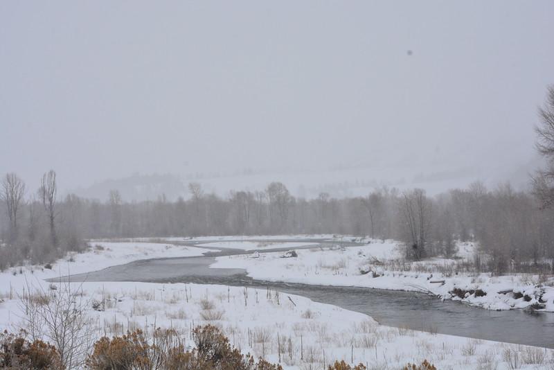 Flat Creek, Jackson Hole, Wyoming