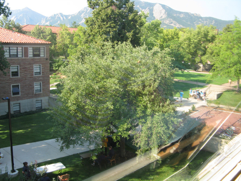 View out of room 308 in Willard.