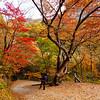 Cheongnyangsan Provincial Park