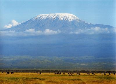 Mt Kilimanjaro, Tanzania elev. 19340'