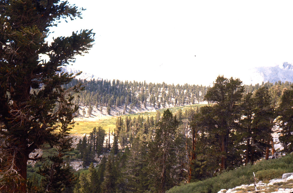 Coming into the Cottonwood Lakes basin