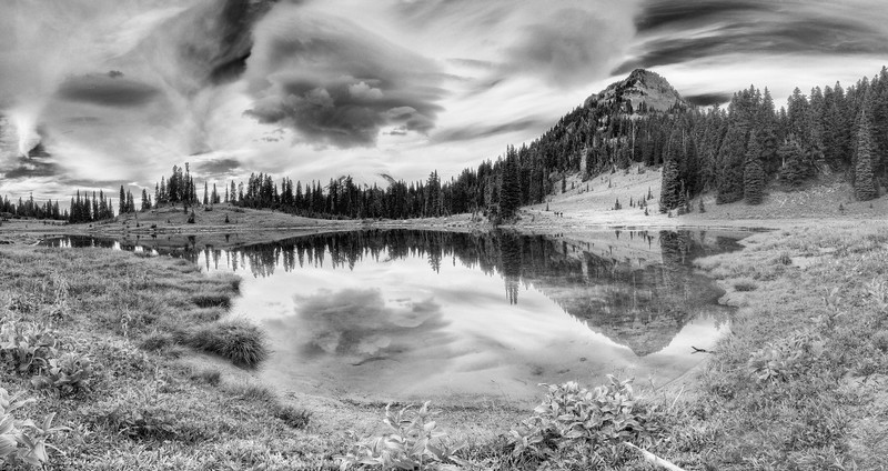 Tipsoo Lake Black and White