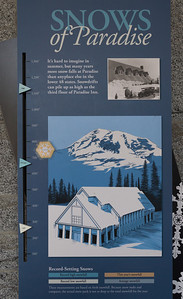 Over 700 inches of snow fell on Mt. Rainier during the 2012/2013 winter, only slightly above average.