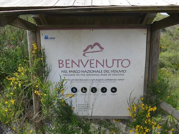 Mt. Vesuvius, Herculaneum and the Naples Museum of Archeology