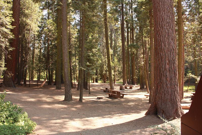 Columbine picnic area, Kings Canyon