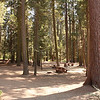 Columbine picnic area, Kings Canyon