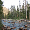 South fork, Kings River