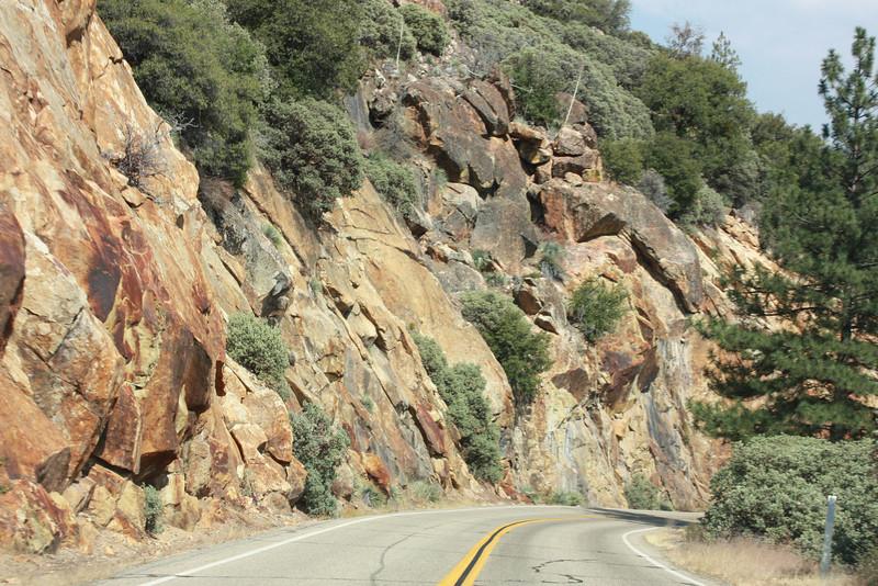 Kings Canyon, road cut
