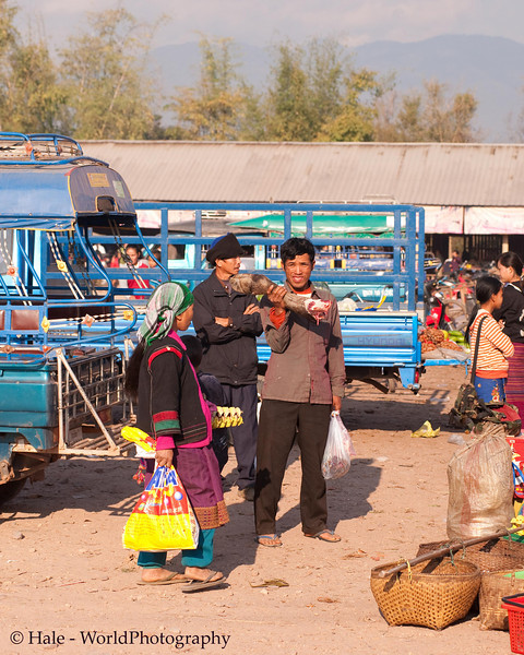 Waiting for a Ride Home With A Leg of Water Buffalo, Muang Sing Market, Luang Namtha Province, Laos