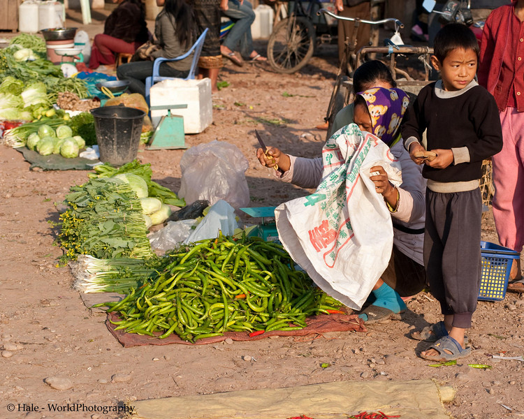 The Family Chili Pepper Stand, Muang Sing Laos