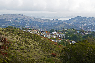 The hills of Sausalito just north of San Francisco