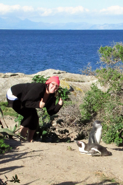 Boulders  Beach where you can commune with African penguins