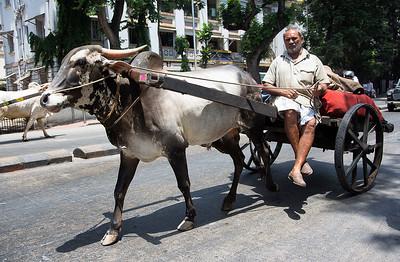 "Mumbai ""traffic"""