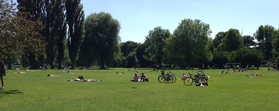 And people enjoying the sun and the green space.