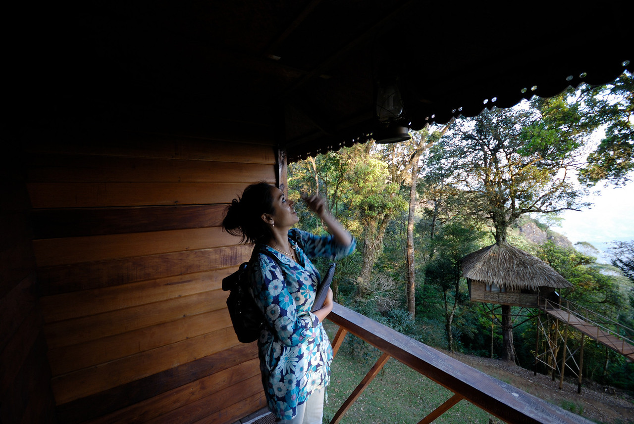 tree house in nature zone resort munnar