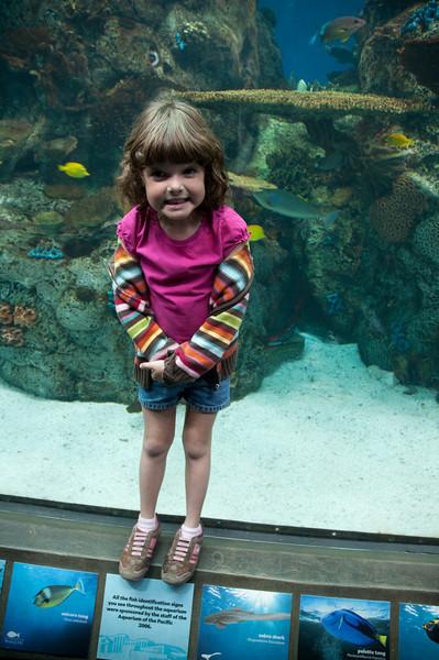 Museums-Aquariums