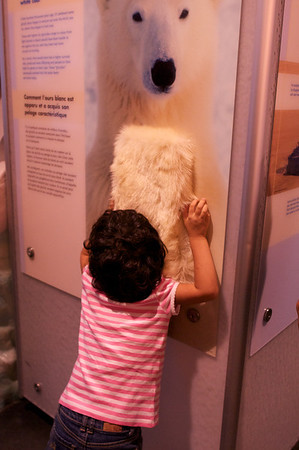 Cyane hugs the closest thing to a polar bear