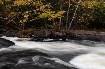 Oxtongue Rapids