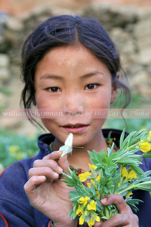 Child of Mustang with butterfly